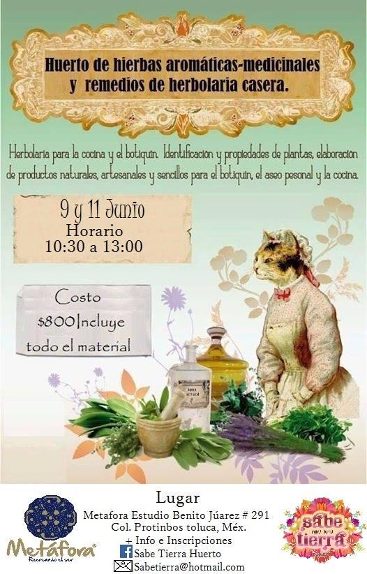Taller huerto de hierbas arom ticas y medicinales y for Hierbas aromaticas y medicinales