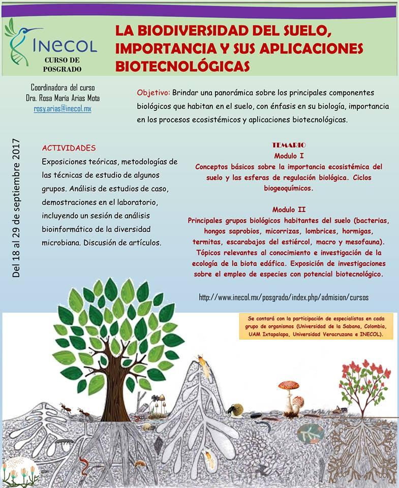 La biodiversidad del suelo importancia y sus aplicaciones for Importancia de los suelos