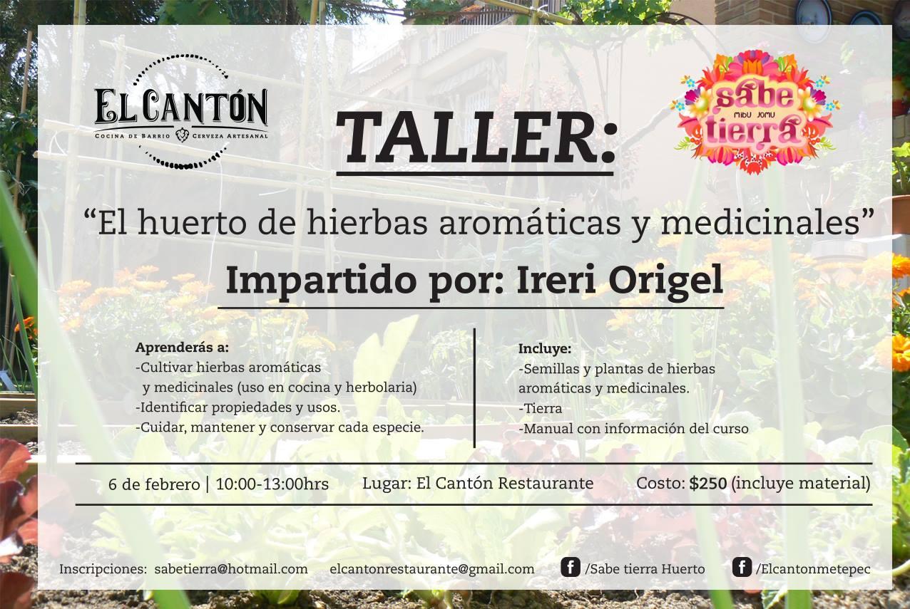 Taller el huerto de hierbas arom ticas y medicinales for Hierbas aromaticas y medicinales