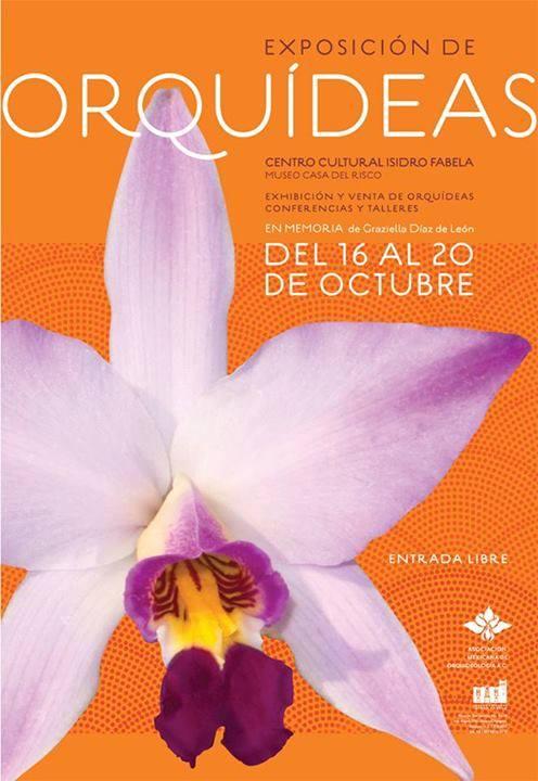 Exposición de Orquídeas ?