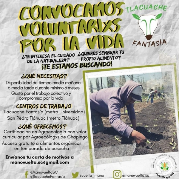 voluntarios_tlacuache